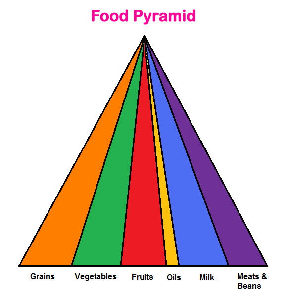 Food Pyramid Lesson & Worksheet - My Schoolhouse - Online Learning